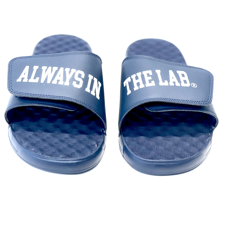 ALWAYS IN THE LAB NAVY SLIDES